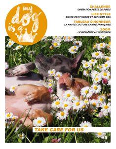 #MAG 100% DOG'sMOM Take Care For US… Toute une philosophie; Dans cette nouvelle édition du MAG, nous avons souhaité placer le bien-être à l'honneur, en vous présentant les petits plus du quo…
