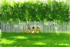 Pascal Campion. Picket Fence