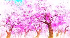 Sakura Tree GIFs on Giphy