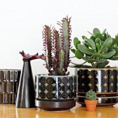 Potted Plants, Planter Pots, Shelfie, Balcony, Instagram, Design, Cactus, Pot Plants