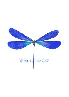 Dragonfly in Cobalt 11x14 print  NEW by driftwoodinteriors on Etsy