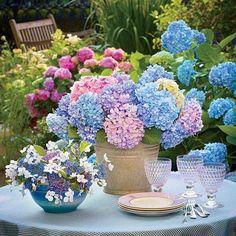 Ideas for flower arrangements for kitchen.