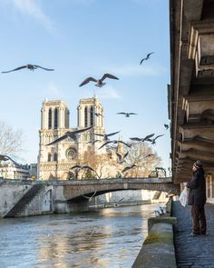 Along the banks of the Seine river
