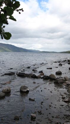 """Loch Ness is a large deep freshwater loch in the Scottish Highlands and due to its great depth it is the largest by volume in the British Isles.  This loch became famous because of """"Nessie"""" the Loch Ness Monster.  Am I a believer YES.  The loch is 14.5 miles from Inverness town center."""