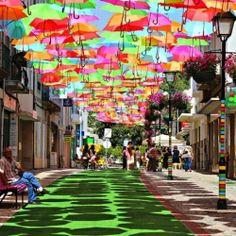 Colorful Umbrella Art Installation