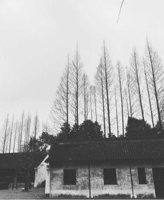 Shangai, China.
