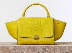 FOTO Catalogo borse Celine primavera estate 2014 FOTO | Purse & Co  #celine #céline #bags #celinebags #céline #borse #borsedonna #springsummer2014 #springsummer #primaveraestate2014 #primaveraestate #moda2014 #fashion #fashionstyle #yellow
