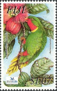 Flora - Fauna on stamps: Endangered bird of fiji, Re-throated Lorikeet. Going Postal, You Are The World, Flower Stamp, Bird Cards, Flora And Fauna, Stamp Collecting, Postage Stamps, Birds, Flowers