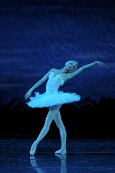 """Natalia Somova as Odette in """"Swan Lake"""" (Stanislavski Moscow Theatre). Photo by Vadim Lapin So beautiful Swan Lake Ballet, Move In Silence, Contemporary Ballet, Female Dancers, Ballet Art, Russian Ballet, Evening Sky, Ballet Photography, Ballet Beautiful"""