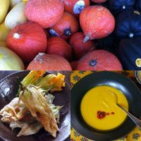 Cozy Asian Pumpkin Recipes and Ideas