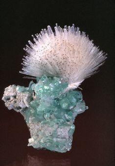 Natrolite et Apophyllite.
