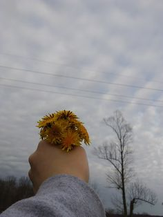 #aesthetic #sky #flower #skyaesthetic #floweraesthetic #yellow #yellowaesthetic #clouds #cloudsaesthetic #sweateraesthetic #springaesthetic #photography #photo #aestheticphoto #aesthetic_photo #pretty #flowerphoto #skyphoto #tree #treeaesthetic tree_aesthetic #dandelion #dandelions #dandelion_photography #spring