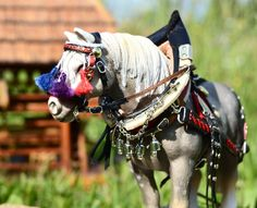 A proud farm horse by mojcaj - model draft horse tack