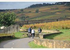 Journée à vélo dans les vignes autour de Beaune, Pommard, Volnay, Meursault http://www.mon-vigneron.com/activite/randonnees/journee-a-velo-dans-les-vignes
