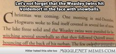 Proof that the Weasley Twins are the best!