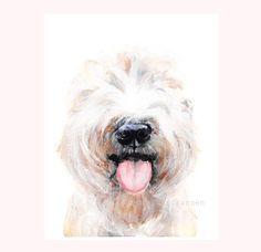 Happy Wheaten Terrier 5x7 Print