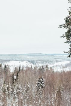 Swedish Lapland.
