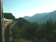 Lattakia-Aleppo railroad is one of beautiful scenes in Syria