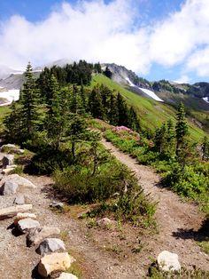 Hiking to Panorama Peak, Mt. Rainier...God's country!  Pacific Northwest