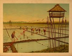 Eerste serie, no. 3 - Een Sawah Anton Pieck, Dutch East Indies, Dutch Colonial, Past Present Future, Old Books, Munich, Vintage Posters, Vietnam, French