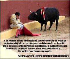 Alvaro Munera, a Colombian bullfighter who could not continue on slaughtering bulls and became an animal rights activist after that fight. Amor Animal, Mundo Animal, Animals And Pets, Cute Animals, Stop Animal Cruelty, Vegan Animals, Faith In Humanity, Animal Rights, Animal Kingdom