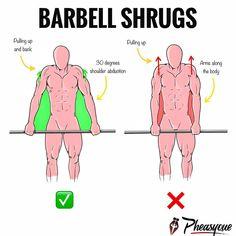 pierdere în greutate barbell rutine