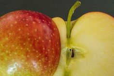 Apfel-Clafoutis, #Apfel #Kuchen