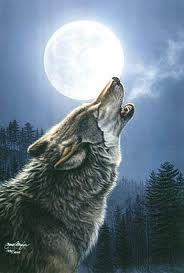 Howl to the moon!