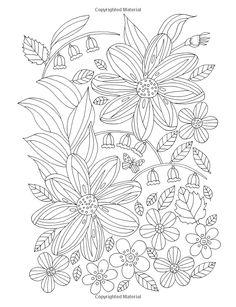 Amazon.com: Flower Hunter: Colouring Book (9781908072917): De-ann Black: Books