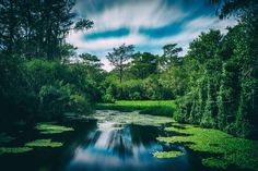 I found this beautiful place on a road trip through Florida near the Everglades. -Please check the website for more pics Earth Photos, Nature Photos, Float Your Boat, Landscape Photographers, Natural Wonders, Virtual World, Beautiful Landscapes, Natural Beauty, Beautiful Places