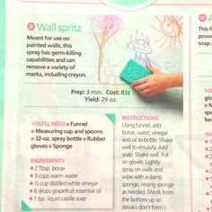 """A """"wall spritz.""""  I've been looking for a great wall cleaner.  Now if only I could figure out what the eff """"liquid castile soap"""" was..."""
