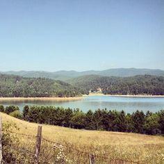 Lago Arvo da Pino Collito