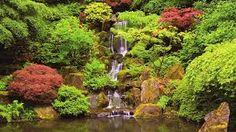 Image result for portland japanese garden lower falls
