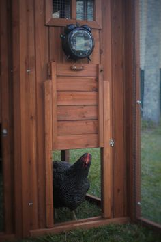automatic chicken door powered by solar panel and opens. Black Bedroom Furniture Sets. Home Design Ideas