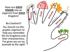 Six Kingdoms Coloring Worksheet Biology IN Pinterest