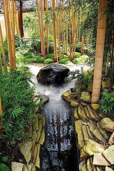 Exotic Bamboo Landscaping Ideas That Are Extremely Durable 41