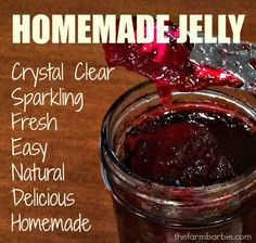 "Perfect.  Easy.  Blackberry jelly. The blackberries are ""ON.""  If you have any canes around your homestead, and you live near me, you probably could eat blackberry flavored foods for th…"