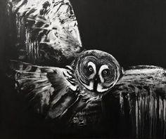 Dark Grey Owl by Paul Hardern #luxury #art #artist #interiordesign #inspiration #large #wallart #painting #artwork #grey #owl