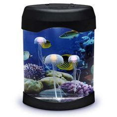 Jellyfish Desktop Aquarium