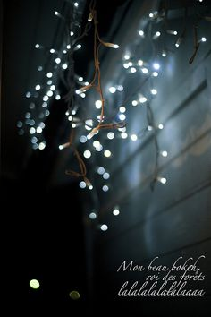 So pretty Twinkle Twinkle lights Blur Background Photography, Light Background Images, Studio Background Images, Background Images For Editing, Photo Background Images, Background Images Wallpapers, Blurred Background, Lights Background, Photo Backgrounds