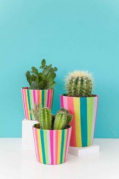 DIY Craft Projects Ideas and Craft Ideas For Teenage Mutant Ninja Turtles. Flower Pot Crafts, Clay Pot Crafts, Crafts To Make, Fun Crafts, Creative Crafts, Painted Plant Pots, Painted Flower Pots, Decorated Flower Pots, Painted Pebbles