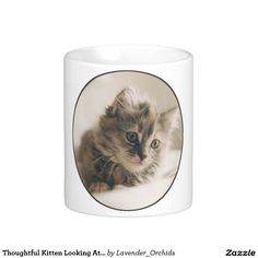 Thoughtful Kitten Looking At You Coffee Mug