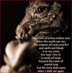 A Book Of Dragon .Knowledge, Magick & more. Magical Creatures, Fantasy Creatures, Dragon Quotes, Dragon Born, Dragon Dreaming, Dragon Pictures, Dragon Pics, Dragon Names, Beautiful Dragon