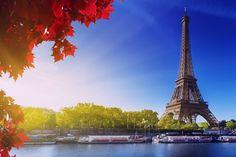 Location de voiture Paris http://www.locationdevoiture.ws/paris/location-de-voiture-paris-1.html Avis agences , Europcar agences , Hertz agences , Sixt agences , Ada agences , Budget agences , Alamo agences , Thrifty agences , National Citer agences , France Cars agences , Cargo agences...