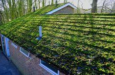 How To Shingle A Roof Laying Asphalt Shingles Madera