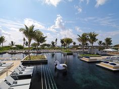 The Best Resorts for an Adults-Only Vacation - The Keys to Travel All Inclusive Beach Resorts, Couples Resorts, Best Resorts, Romantic Destinations, Romantic Getaways, Honeymoon Destinations, Honeymoon On A Budget, Best Honeymoon, Riviera Maya