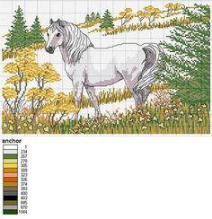 Patrones y esquemas gratis: Gráfico de un caballo en el prado