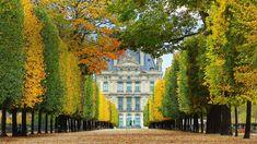 Jardin des Tuileries in autumn leading to the Louvre Museum in Paris France ( Brian A. Jackson/Getty Images Plus) Palais Des Tuileries, Tuileries Paris, Monuments, Parcs Paris, French Formal Garden, Versailles, Rio Sena, Paris Garden, Paris France