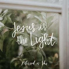 A Light in the Dark | Blessed is She Daily Devotion | Catholic | Inspiration | Faith
