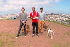 Dronies #PortoAlive #BitsBytes 08.05.2014